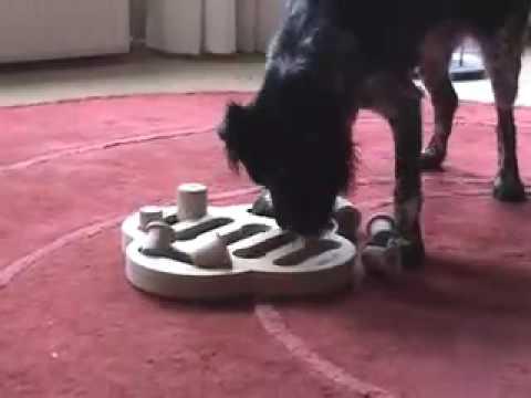 nina ottosson dogfighter
