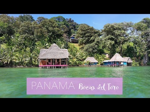 Bocas del Toro in Panama   Karibik-Feeling   Was man dort so alles machen kann...   PP