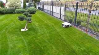 Kosiarka Robot Prezentacja Pracy Kosiarki Robot w ogrodzie - koszenie trawy przez kosiarkę robot
