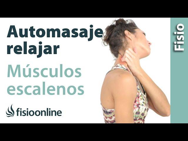 Estiramientos cervicales - Músculos escalenos | Fisioterapia Online