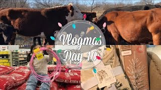 Vlogmas Day 10 🎄 Tiny Walmart & Target Haul & Meet Norman Alexander   Daisy Hearts