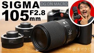 SIGMA 105mm F2.8 DG DN MACRO | Art めっちゃ欲しくなった中望遠マクロレンズ フルサイズ4700万画素センサー Leica SL2 で試写!Lマウント版にはテレコンあり