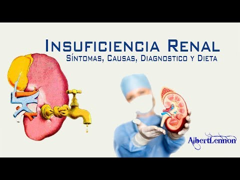 insuficiencia-renal:-síntomas,-causas,-diagnostico-y-dieta