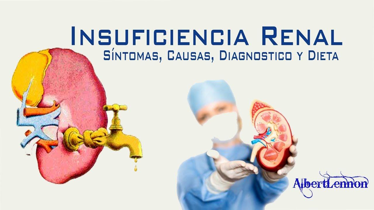 Que no puede comer una persona con insuficiencia renal