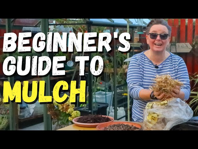 What is MULCH and why do it?