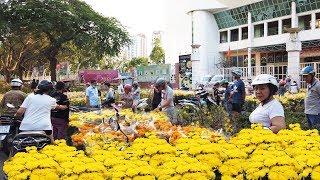 SÀI GÒN #145: Con đường bán hoa xuân và mai vàng nhiều bậc nhất ở Sài Gòn tết 2020