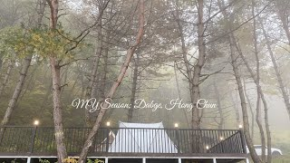 찐 힐링, 다시 가고 싶은 숲속 캠핑장, 화천 답…