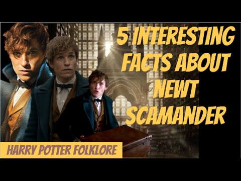 5 Interesting Facts About Newt Scamander
