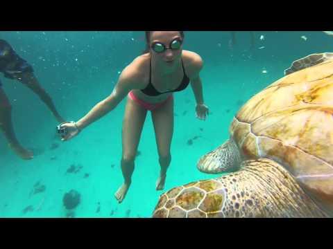 BARBADOS, CARIFTA SWIMMING 2015 |GoPro Cayman