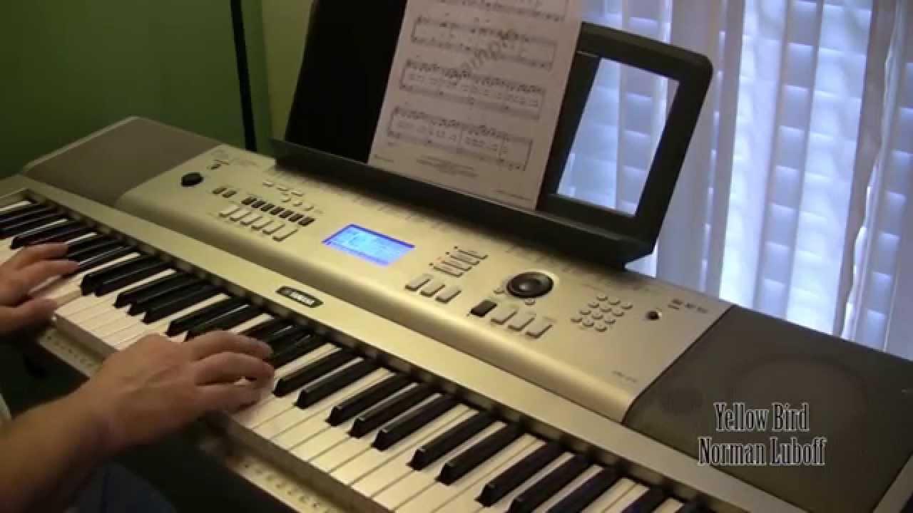 Yamaha ypg 235 keyboard demo keyboard playing youtube for Ypg 235 yamaha