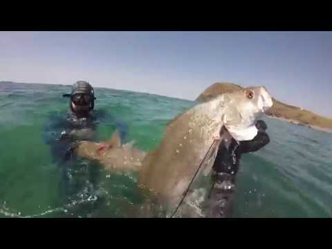 Spearfishing - Northern Adventures