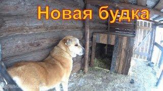 Про собаку и  вольер // Деревенская жизнь