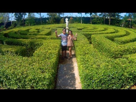 THE LABYRINTH MAZE, TOLEDO CEBU '17