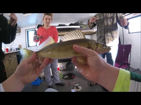 how to catch walleye on lake of the woods