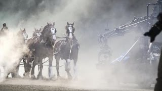 Super Bowl Ad   Inside Iconic Clydesdale Budweiser Commercial