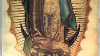 Die Jungfrau von Guadalupe -Betrachtung des Gnadenbildes-