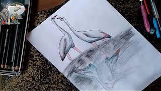 Pencil drawing heron ||पेंसिल ड्राइंग ||by Lohiya Art