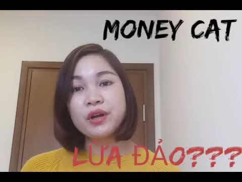 LÝ DO MONEY CAT BỊ TỐ LÀ LỪA ĐẢO. CÓ NÊN VAY TIỀN Ở ĐÂY KO?
