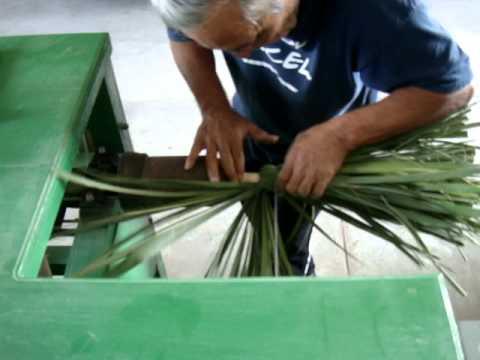 Forjando escoba de palma tipo jamaica youtube - Escobas de palma ...