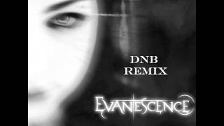 Evanescence - Bring Me To Life (Drum&Bass Remix)