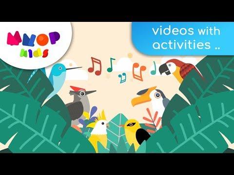 Birds of Paradise 1 - Birds Songs for Children | Songs for Kids