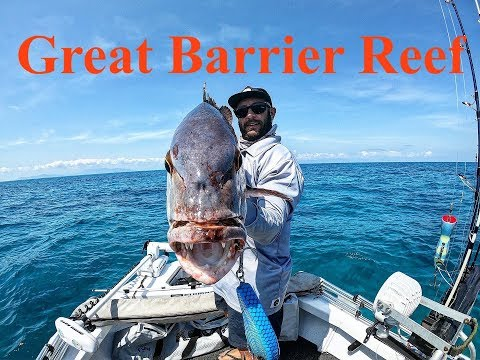 Townsville To Cairns, GREAT BARRIER REEF Fishing And Snorkelling Road Trip