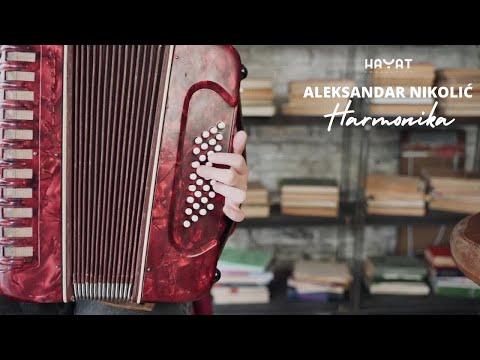 ALEKSANDAR NIKOLIĆ - Harmonika (Official Video)
