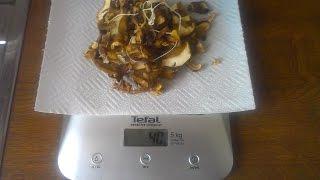 Суп из сушёных белых грибов от Нади