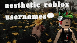 Aesthetic Roblox Usernames - •aesthetic vibes•