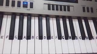 Tum Dil ki Dhadkan me  Dhadkan  Keyboard tutorial  piano  Harmonium  Slowly played in end