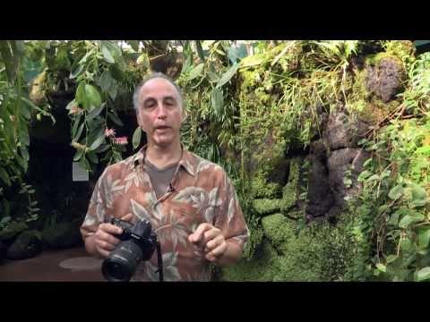 Garden Photo Tips with Rich Pomerantz — Get Closer!