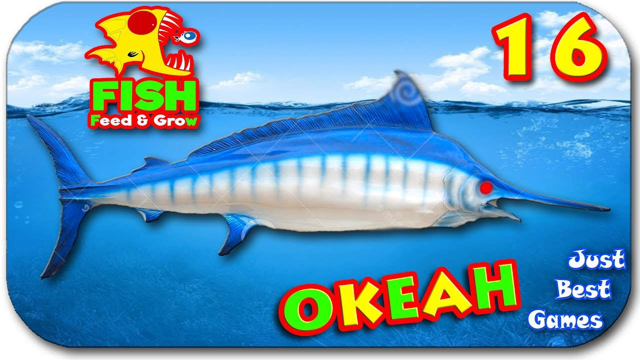 Feed and grow fish youtube for Feed and grow fish online