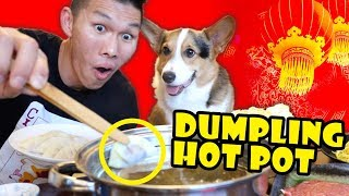 Dumpling Hot Pot for Lunar New Year w/ Corgi || Life After College: Ep. 626