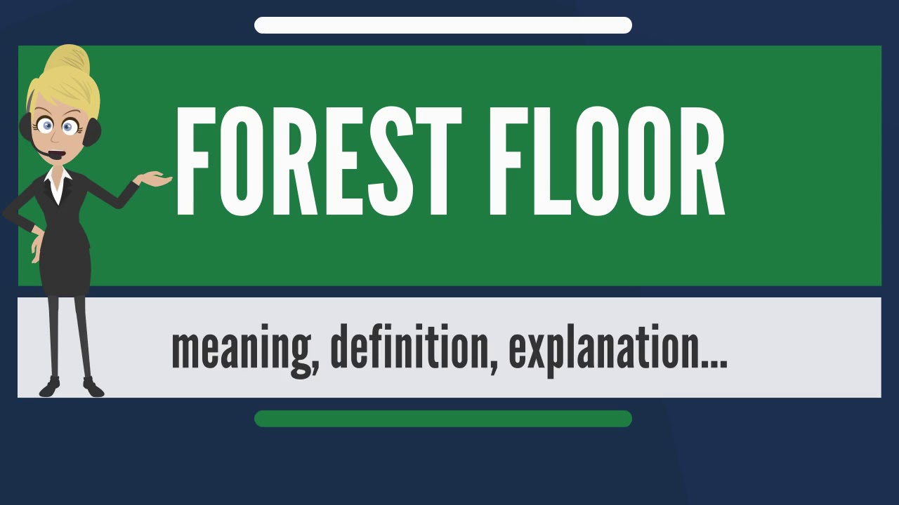 What does FOREST FLOOR mean