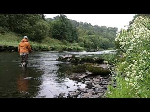Salmon Fishing Ireland 2020