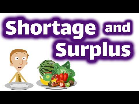 Shortage and Surplus | Economics Video for Kids