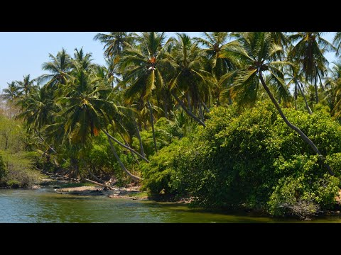 Best tourist place in south India | Pondicherry photography | Tourist place in India