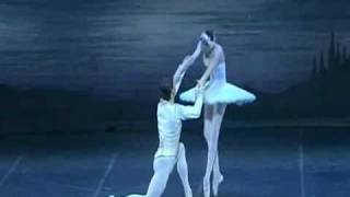 Swan Lake Main Theme