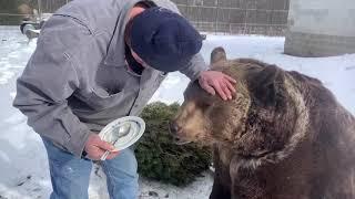 Happy Birthday to all the bears!