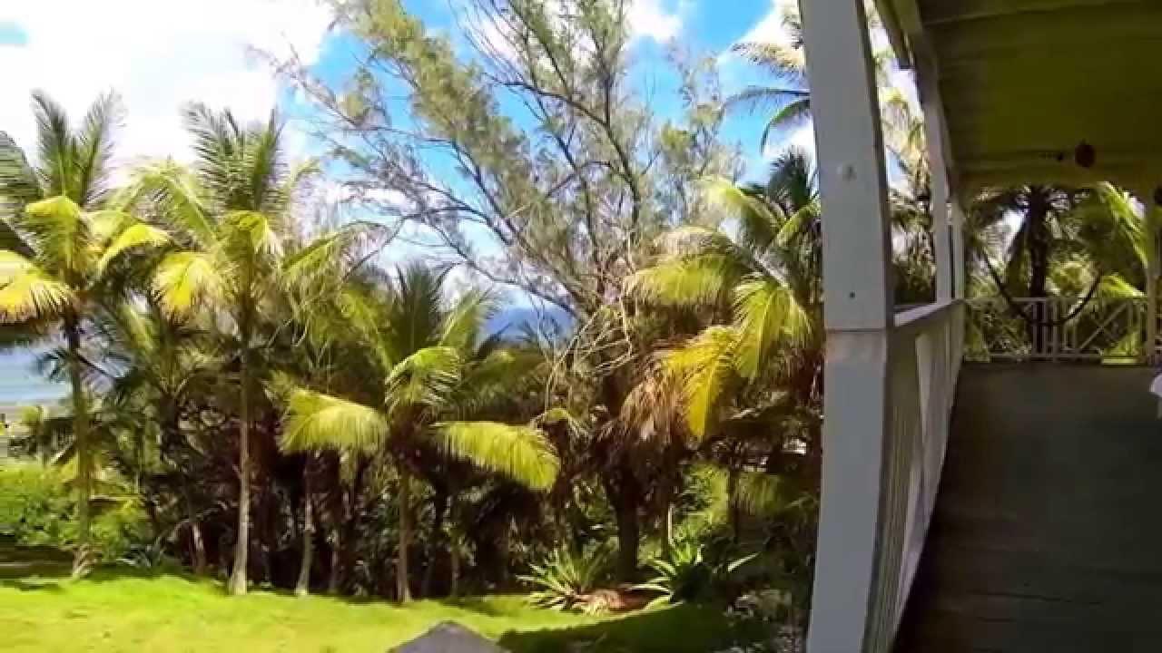patio at sea-u guest house in bathsheba barbados - youtube