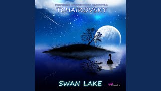 Swan Lake, Op. 20, Act. 1: No. 7, Sujet