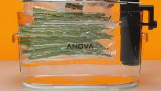 Anova Nano Intro Video