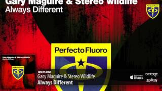Gary Maguire & Stereo Wildlife - Always Different (Original Mix)