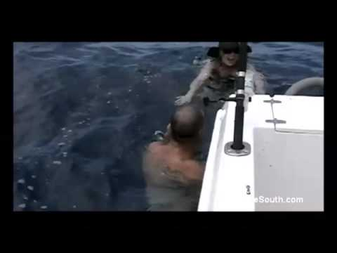 kaydenkrossswims
