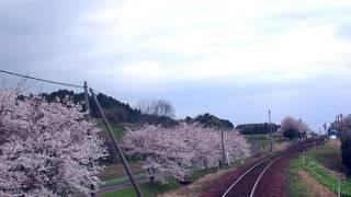 西岸駅_入線2017 04 15