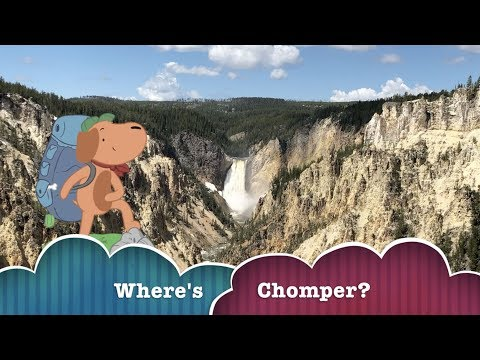 Where's Chomper? Yellowstone National Park - Wyoming Part 1