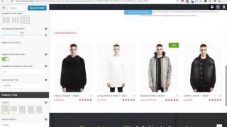Quick Search in WordPress Theme Customizer - Nitro theme