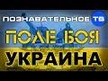 Поле боя Украина Познавательное ТВ Андрей Фурсов mp3