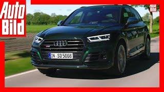 Audi SQ5 (2017) - Sportliches Benziner-SUV / Fahrbericht