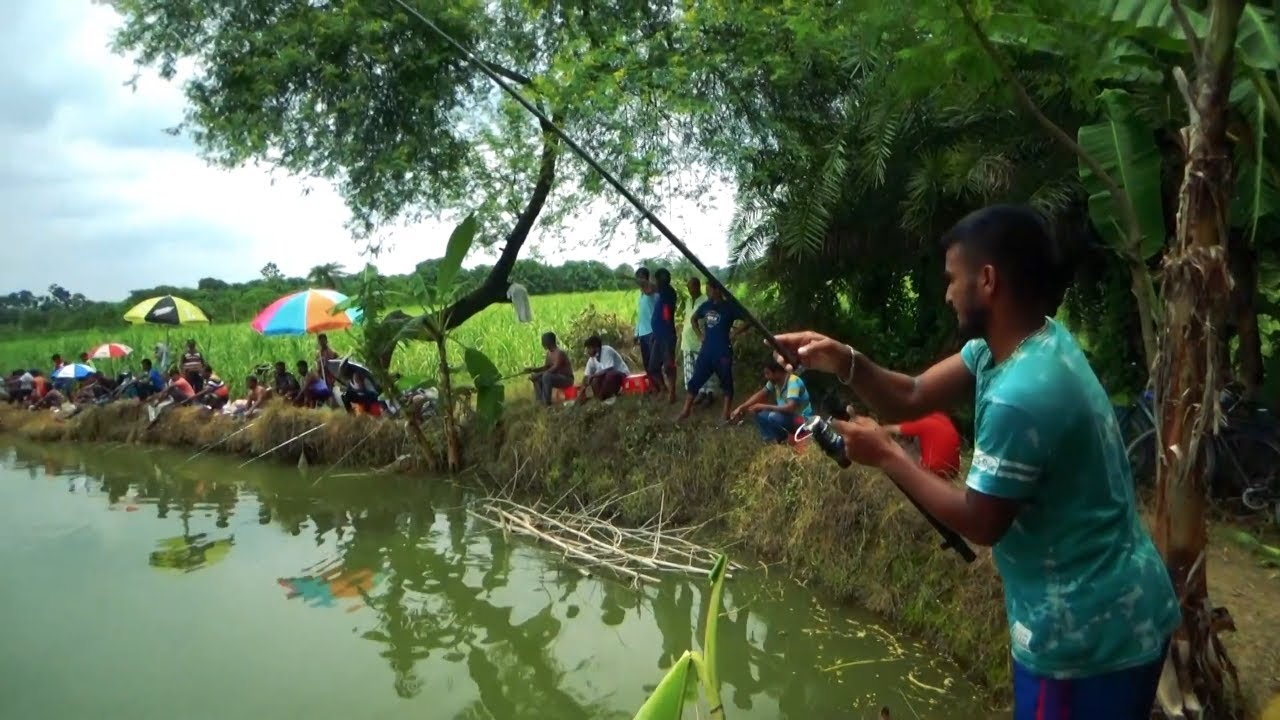Best Hook Fish Hunting Videos By Fish Spark In Village Pond